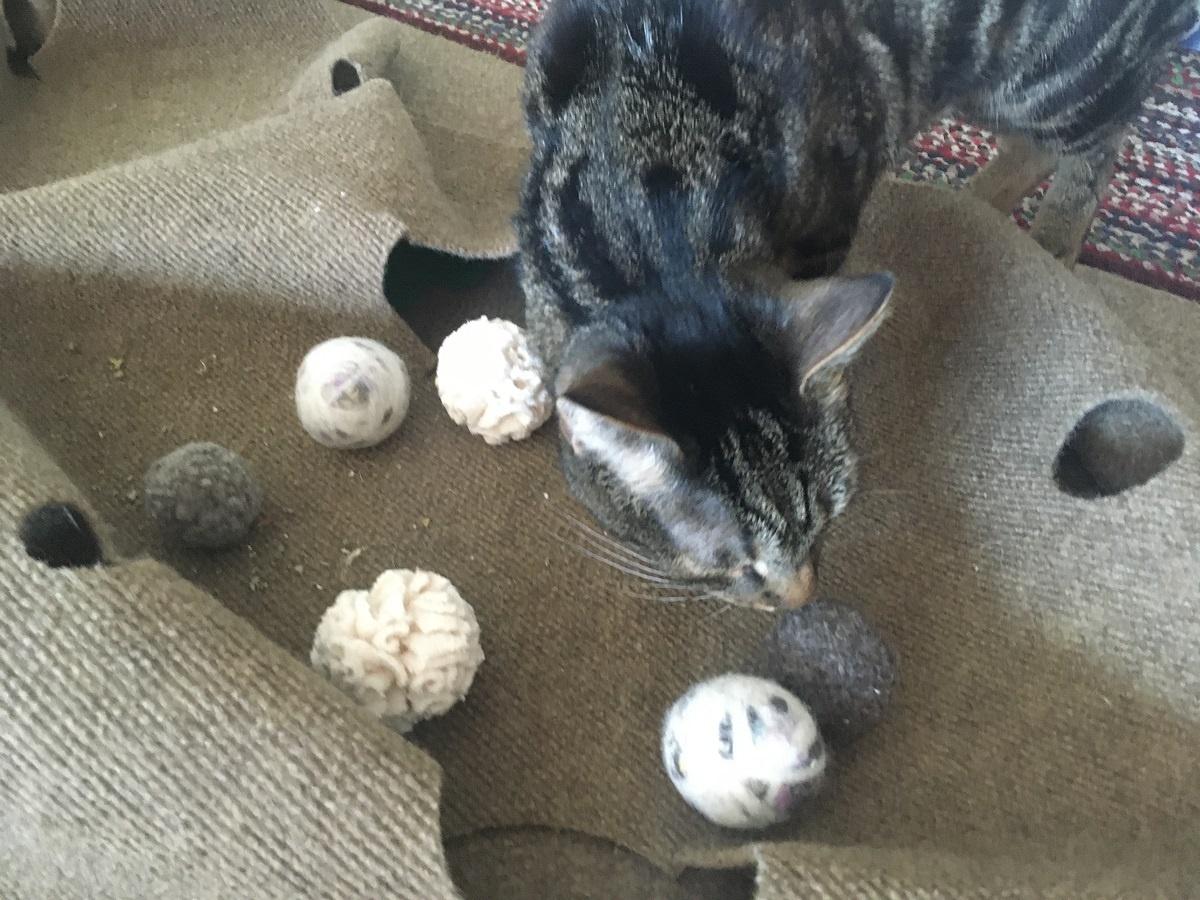 balles de chasse en coton jouets paresseux pour chats